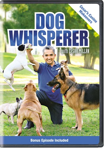Dog Whisperer with Cesar Millan: Cesar's Canine Makeovers