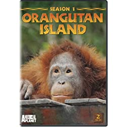 Orangutan Island - Season 1
