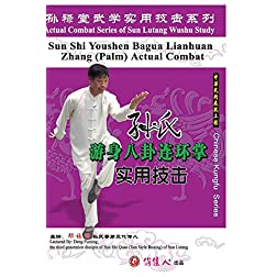 Sun-style Youshen Bagua Lianhuan Zhang (Palm) Actual Combat