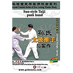 Sun-style Taiji push hand.