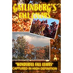 GATLINBURG'S FALL COLORS