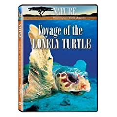 Nature: Voyage of the Lonely Turtle