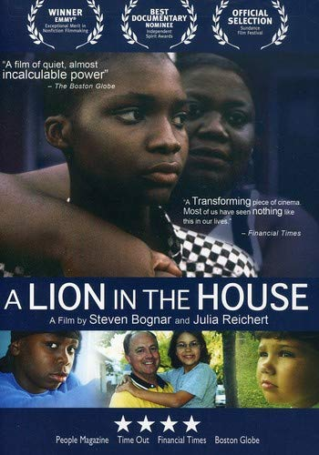 A Lion in the House