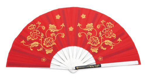 Tai Chi Fan Dance Kit