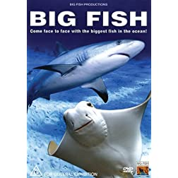 Big Fish: Come Face to Face with the Biggest Fish in the Ocean!