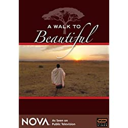 A Walk To Beautiful - NOVA