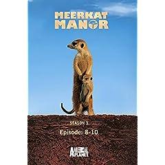 Meerkat Manor Season 3 - Episode: 8-10