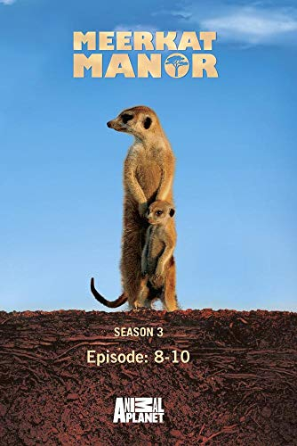Meerkat Manor Season 3 - Episode: 8-10