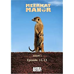 Meerkat Manor Season 3 - Episode: 11-13