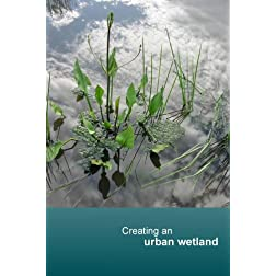 Creating an urban wetland (NTSC)
