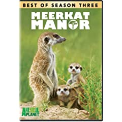 Meerkat Manor: The Best of Season 3