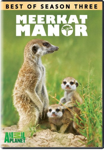 Meerkat Manor: The Best of Season 3
