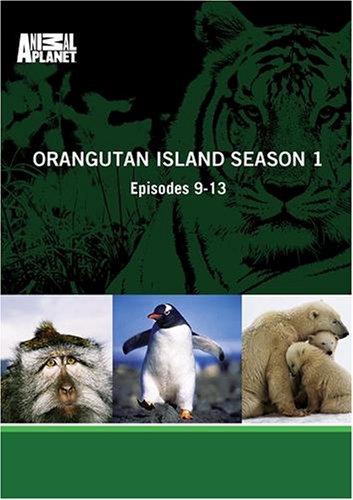 Orangutan Island Season 1 - Episodes 9-13
