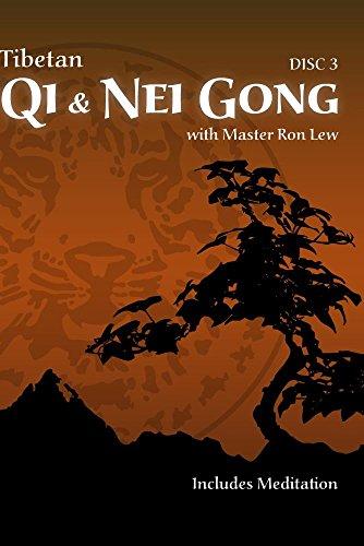 Tibetan Qi & Nei Gong - Disc 3