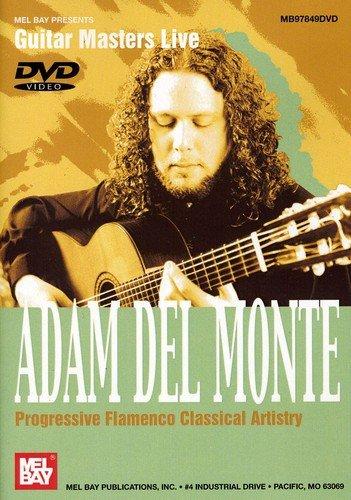 Progressive Flamenco- Classical Artistry