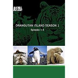 Orangutan Island Season 1 - Episodes 1-4