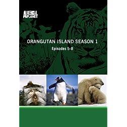 Orangutan Island Season 1 - Episodes 5-8