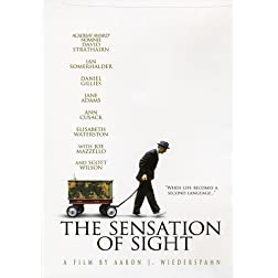 The Sensation of Sight