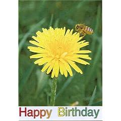 My Pal Trigger: Greeting Card: Happy Birthday Daughter