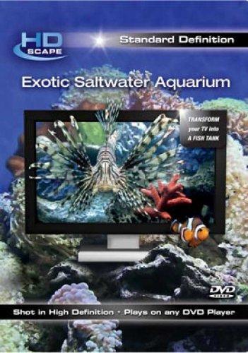 Exotic Saltwater Aquarium Sd (Dol)