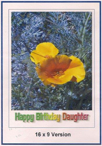 Guns Of Diablo: Widescreen TV: Greeting Card: Happy Birthday daughter