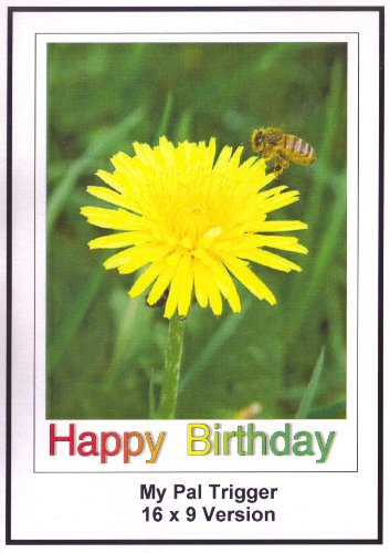 My Pal Trigger: Greeting Card: Happy Birthday Daughter
