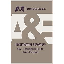A&E --  Investigative Reorts : Inside Polygamy