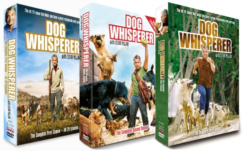 Dog Whisperer with Cesar Millan - Seasons 1-3 Collection