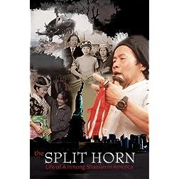 The Split Horn