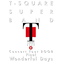 Concert Tour 2008-Wonderful Days