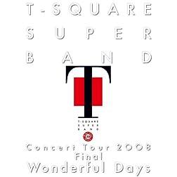 Concert Tour 2008-Wonderful Days