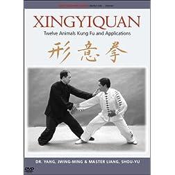 Xingyiquan (Hsing I Chuan) Kung Fu