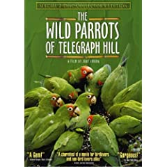 The Wild Parrots of Telegraph Hill (Special Two-Disc Collector's Edition)