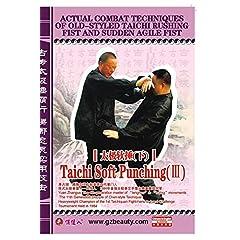 Taichi Soft Punching   (III)