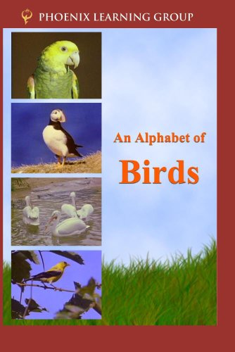 An Alphabet of Birds