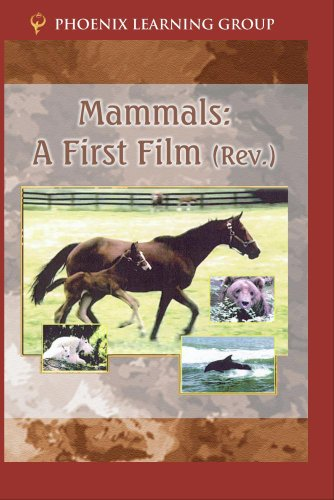 Mammals: A First Film