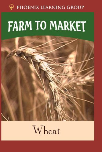 Farm to Market: Wheat