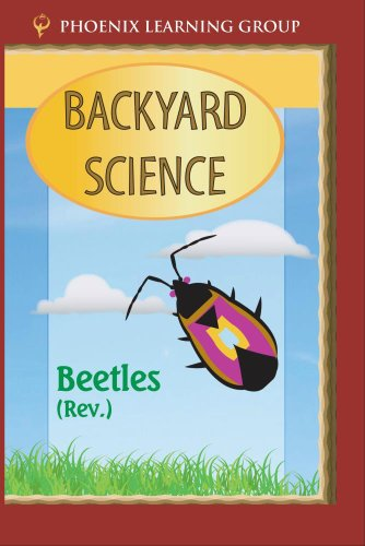 Beetles: Backyard Science