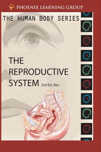 The Human Body: Reproductive System