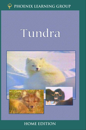 Tundra (Home Use)