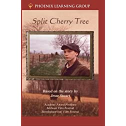 Split Cherry Tree