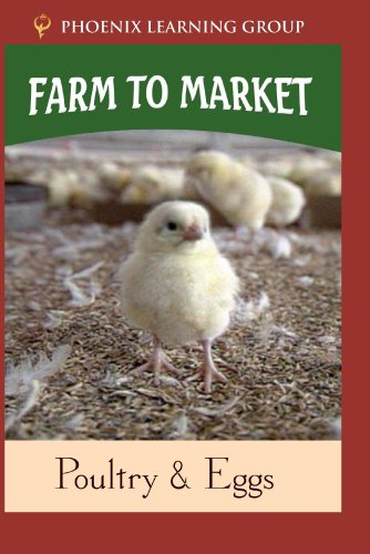 Farm to Market: Poultry & Eggs