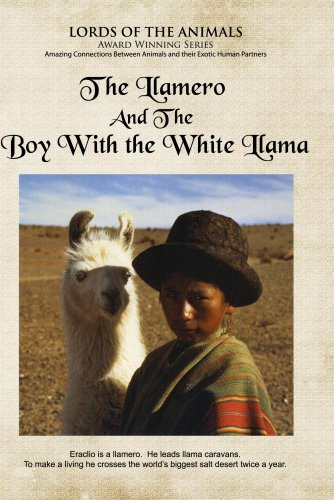 The Llamero and the Boy with the White Llama
