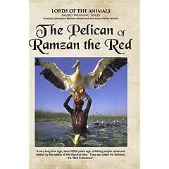 The Pelican of Ramzam Red