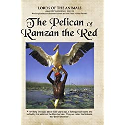 The Pelican of Ramzam Red