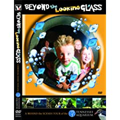 Beyond The Looking Glass- A Behind The Scenes Tour Of The Tennessee Aquarium