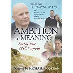 Ambition to Meaning: Finding Your Life's Purposes