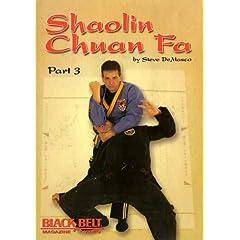 Shaolin Chuan Fa Fighting Vol. 3 with Steve DeMasco