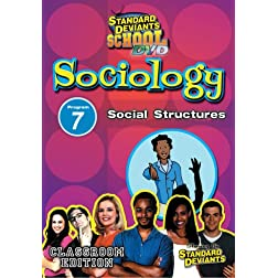 SDS Sociology Module 7: Social Structures