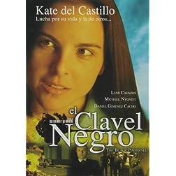 Clavel Negro (Black Pimpernel)